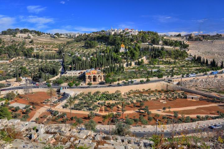 The Mount of Olives - Jerusalem