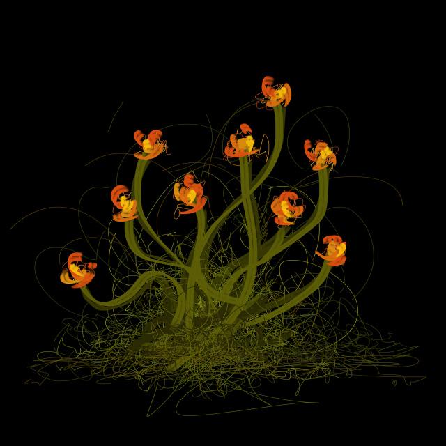 flowerthread no1©marina kanavaki