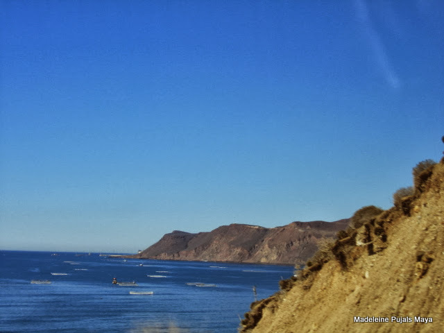 Baja California Blue