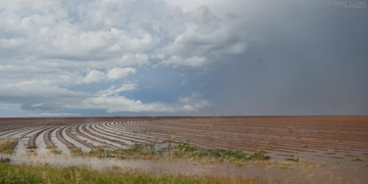 Rain, Agriculture, Landscape, Clouds
