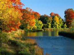 Beautiful-fall-of-the-river-site